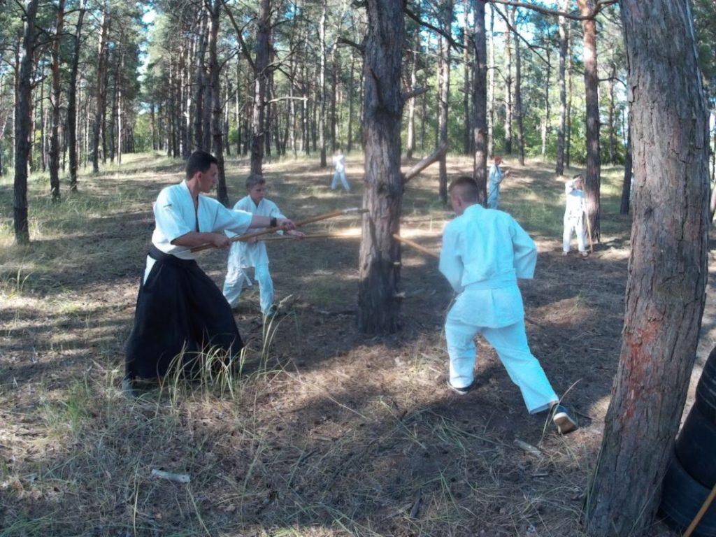 Айкидо в Херсоне, айкидо херсон, летний лагерь айкидо