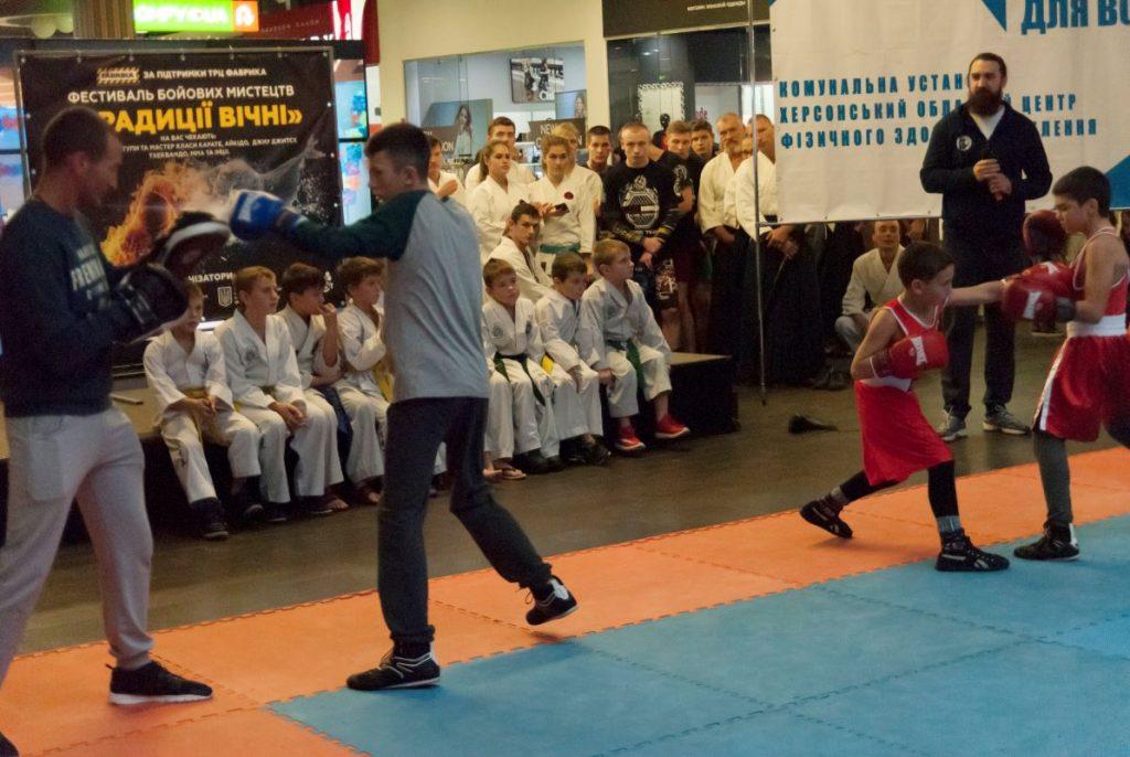боевые искусства херсон, бокс херсон, бокс в херсоне