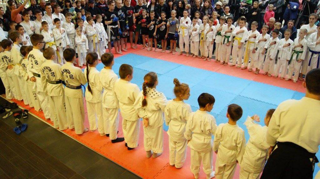 Боевые искусства херсон, фестиваль боевых искусств херсон, айкидо в херсоне