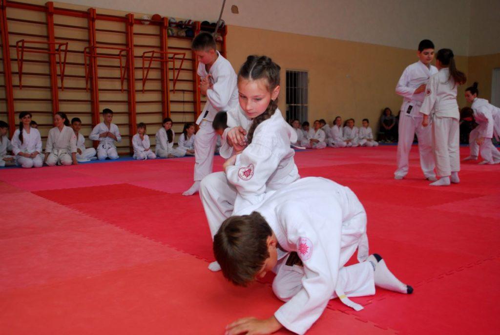 Айкидо херсон, боевые искусства херсон, aikido, aikido ukraine, aikido kherson