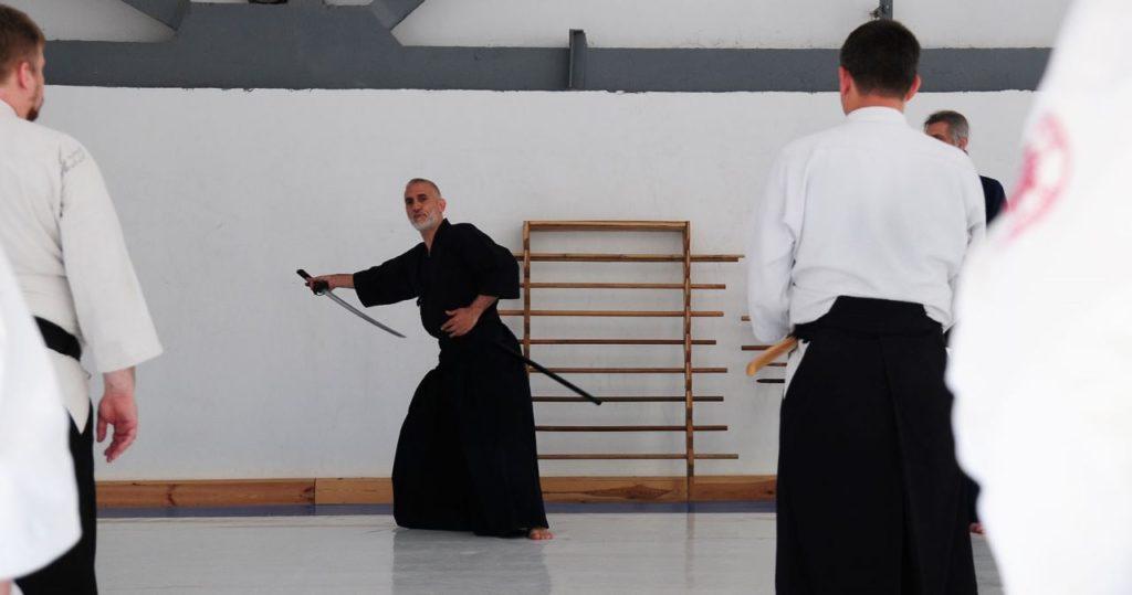 Ryushin Shouchi Ryu, айкидо в Херсоне, айкидо Херсон, айкидо херсон центр